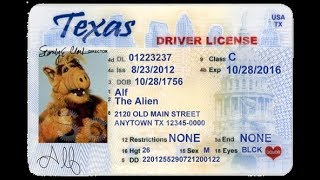 Вождение и получение водительских прав в США. Странные американские правила