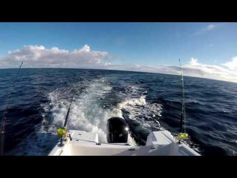 Port Macdonnell - No Tuna :(
