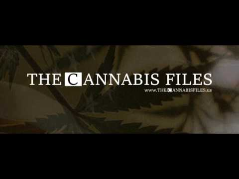 The Cannabis Files #001 feat  Timothy Locke