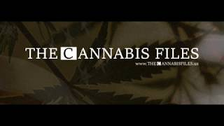 The Cannabis Files #001 feat  Timothy Locke