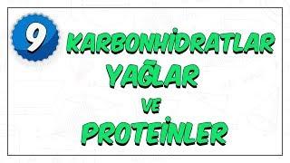 9. Sınıf Biyoloji  Enerji Veren Organik Bileşikler ( Karbonhidratlar- Yağlar- Proteinler)