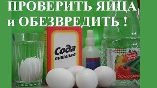 Как проверить яйца и Обработать от Сальмонеллеза