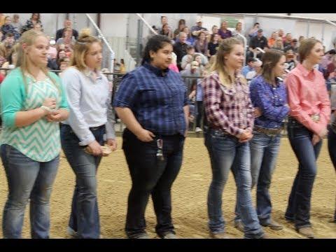 Ellis County Youth Expo – Day Three