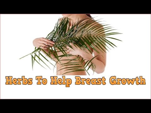 ✓✓✓ Herbs To Help Breast Growth, Bigger Breasts Without Implants, Breast Augmentation Meaning