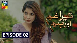 Tera Ghum Aur Hum Episode 2 HUM TV Drama 2 July 2020