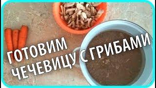 Чечевица с грибами и Полезный перекус для грудничка. Домашние рецепты. Чайники в Деревне