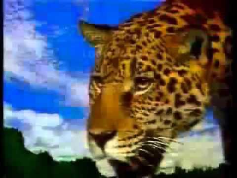 Abertura Pantanal - TV Manchete - 1990