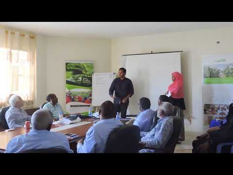 My Internship at the Somali Agriculture Technical Group