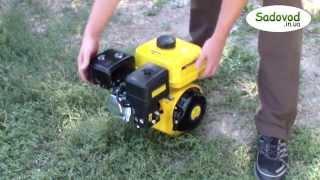 видео Купить двигатель с вертикальным валом в интернет-магазине, бензиновые двигатели с вертикальным коленвалом с доставкой