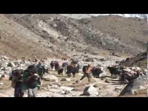 Everest Skydive Worlds Highest landing Wendy Smith