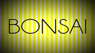 'Sex, Lies and Bonsai' book trailer