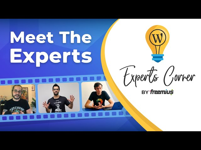 Learn How to Sell WordPress Plugins and Themes from Experts - Experts Corner