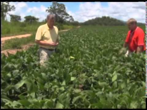 U.S. Farm Report: Africa: Tanzania to Mozambique