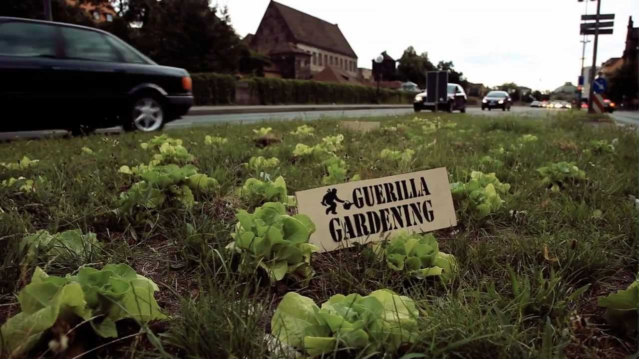 Guerilla Gardening - YouTube