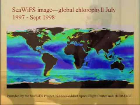 eScience Workshop 2005 - Environmental Science from Satellites