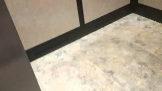 Cane Spider in the Elevator- Kihei, HI