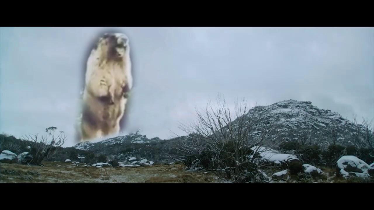Big Enough Marmot Meme - YouTube