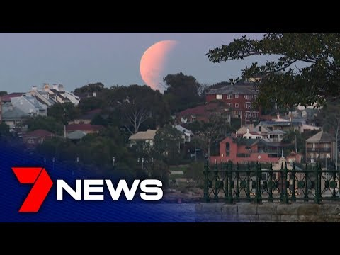 2019 Lunar Eclipse Seen From Sydney Harbour | 7NEWS