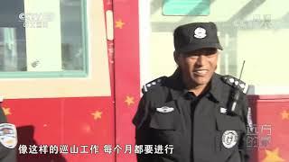 [远方的家]行走青山绿水间 守望可可西里| CCTV中文国际
