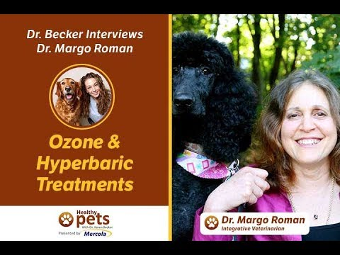Dr. Becker Interviews Dr. Roman about Ozone and Hyperbaric Treatments