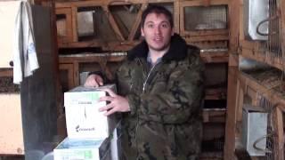 Приезд новых кроликов  Порода Серебро(, 2017-04-09T18:18:38.000Z)