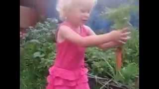 Вырвала морковку и ...(Просматривая видео, по возможности, ставьте лайки и подписывайтесь на канал. Чем больше просмотров, тем..., 2013-08-25T14:48:41.000Z)