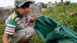 Tập 1: Xót xa cậu bé mồ côi cha nhặt phân bò kiếm tiền đi học và phụ mẹ khuyết tật