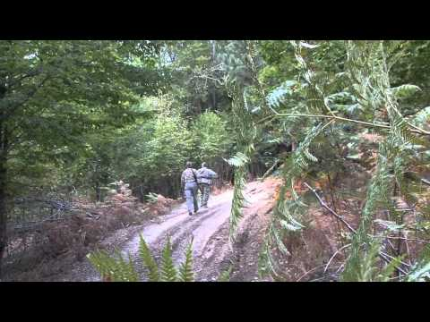 Monster 9x9 Solo Elk Hunt - Stuck N the Rut 57 from YouTube · Duration:  8 minutes 4 seconds