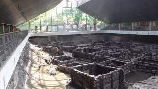 видео Археологический музей «Берестье»
