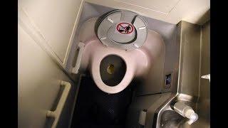 Вот почему 85 сантехников на борту самолёта не смогли починить туалет