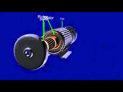 AC%20Motor%20Animation%20Video.B.Tech%20Electrical%20-%20YouTube