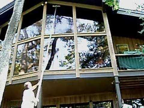 Ladderless Window Cleaning