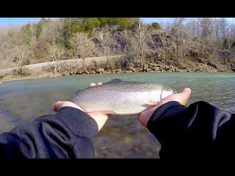 Clear Water Trout Fishing- Catch Cook