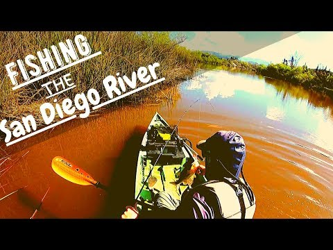 Bass Fishing The San Diego River