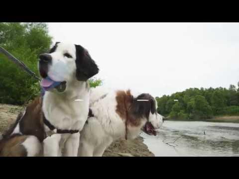 Otto Armleder Memorial Park - Great Parks of Hamilton County