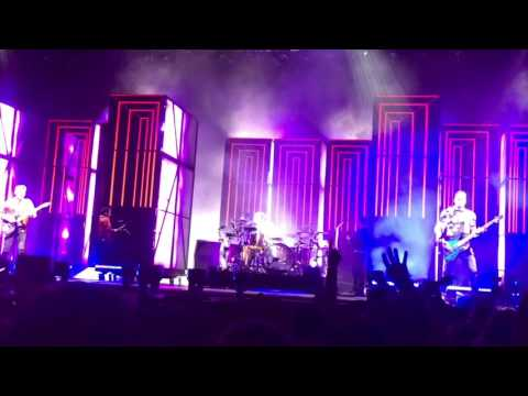 Muse - Supermassive Black Hole (Live at Tampa FL, May 21, 2017)