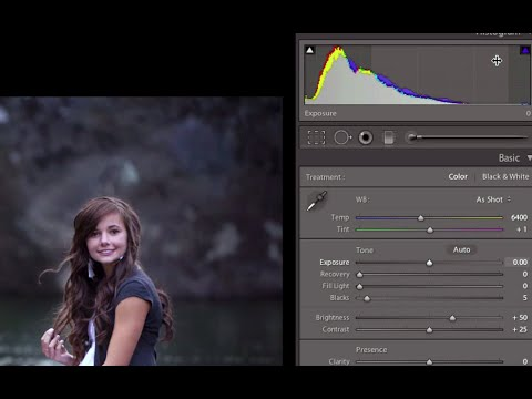 How to Use a Histogram in Lightroom.