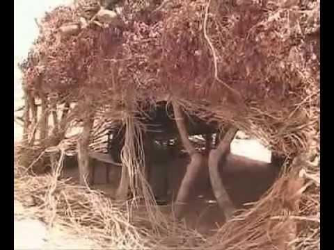 Download Niger Film Kakasi