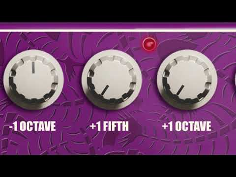 Quinta Pitch Machine Plugin