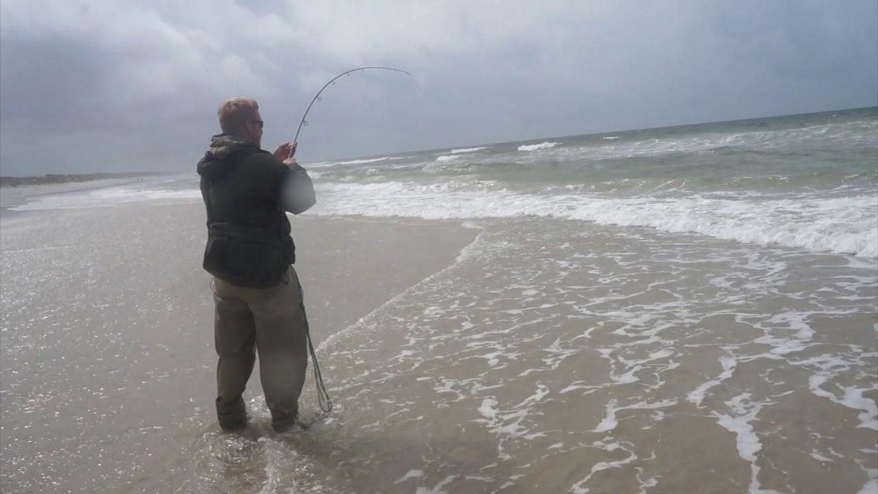 Pighvar p vestkysten fishing for turbot in denmark for Pa out of state fishing license