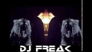 "Electro House Mix 2013 ""ANIMALS STYLE"" (DJ Freak)"