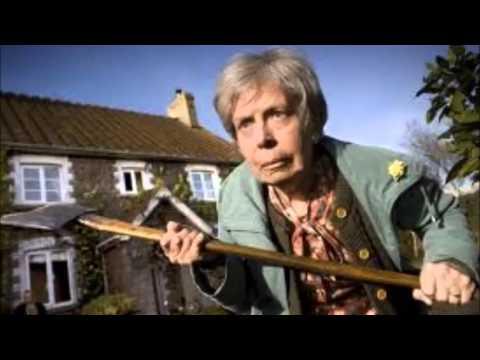 видеоприколы про пенсійне