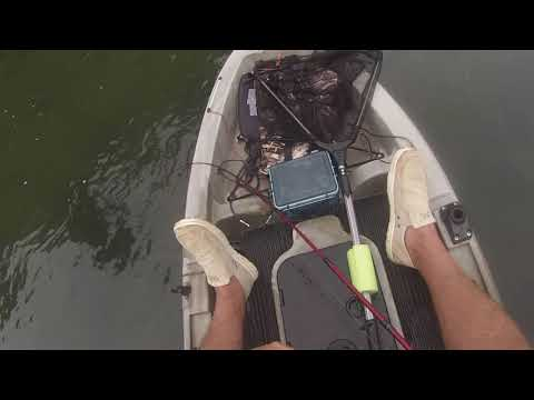 Toccoa River Trout Fishing