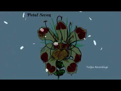 Squire - Entrepreneur (Original Mix) PETAL SEVEN