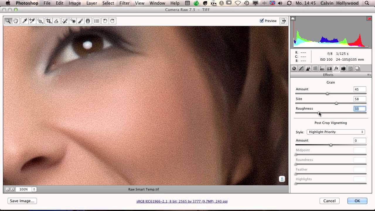 Camera Raw Skin Retouching (Photoshop Tutorial by Calvin Hollywood)
