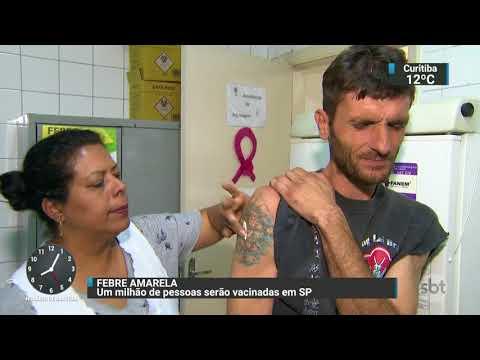 Um milhão de pessoas devem ser vacinadas contra a febre amarela em SP | SBT Brasil (23/10/17)