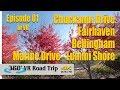 Beautiful Nature Scenery in VR   Episode 01   360 VR Road Trip