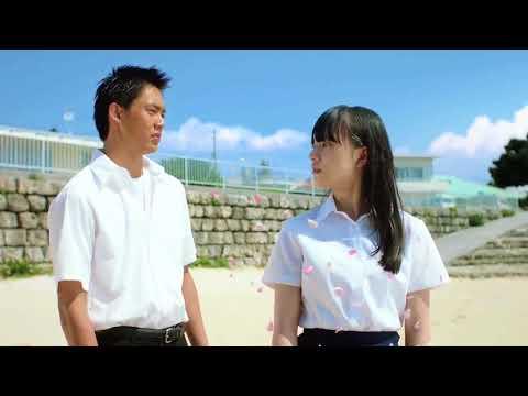 綾瀬はるか レノアハピネス CM スチル画像。CM動画を再生できます。