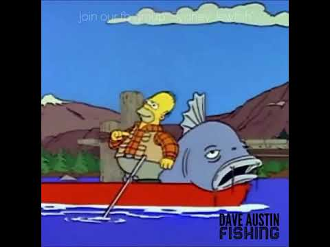 Simpsons Fishing Caught A Mulloway