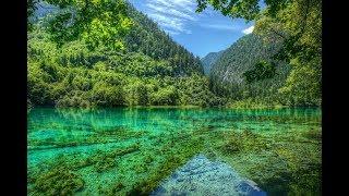 Live Stream  Lake Germany - Красивый вид Озеро Германии онлайн